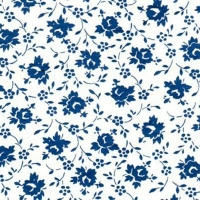 Tiss Trans TPB6 Sml Blue Flwrs 420x280 - Click for more info