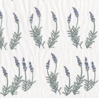 Tiss Trans Lavender TPC7 420x270 - Click for more info