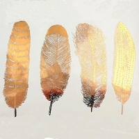 Decal - Feathers - Gold - Click for more info