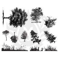Botanical - Trees Silkscreen - Click for more info