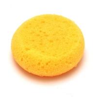 Hydra Sponge (Large) 90mm diam - Click for more info